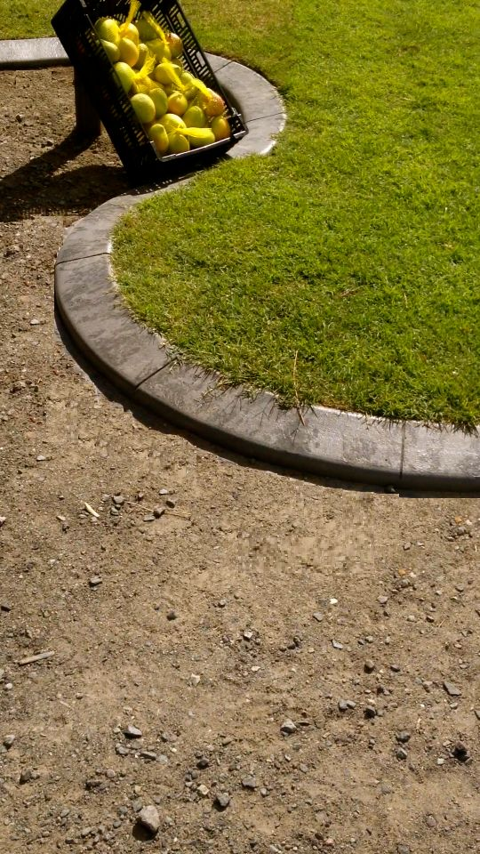 Garden Edging Sunshine Coast Your garden edging company on the